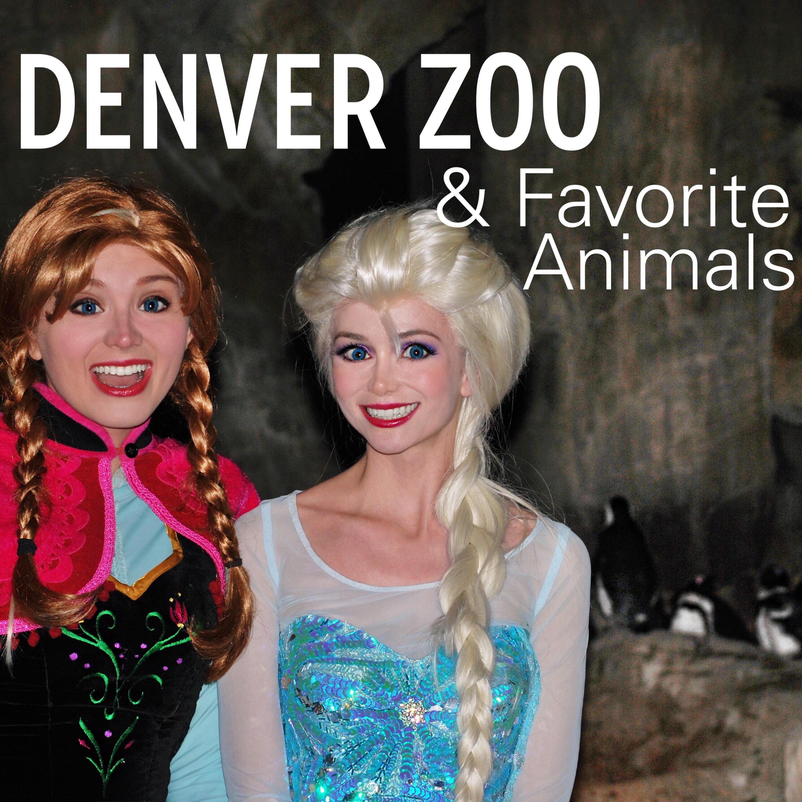 Denver Zoo Lights Princesses